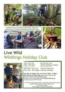 Wildlings Holiday Club Draft Flyer