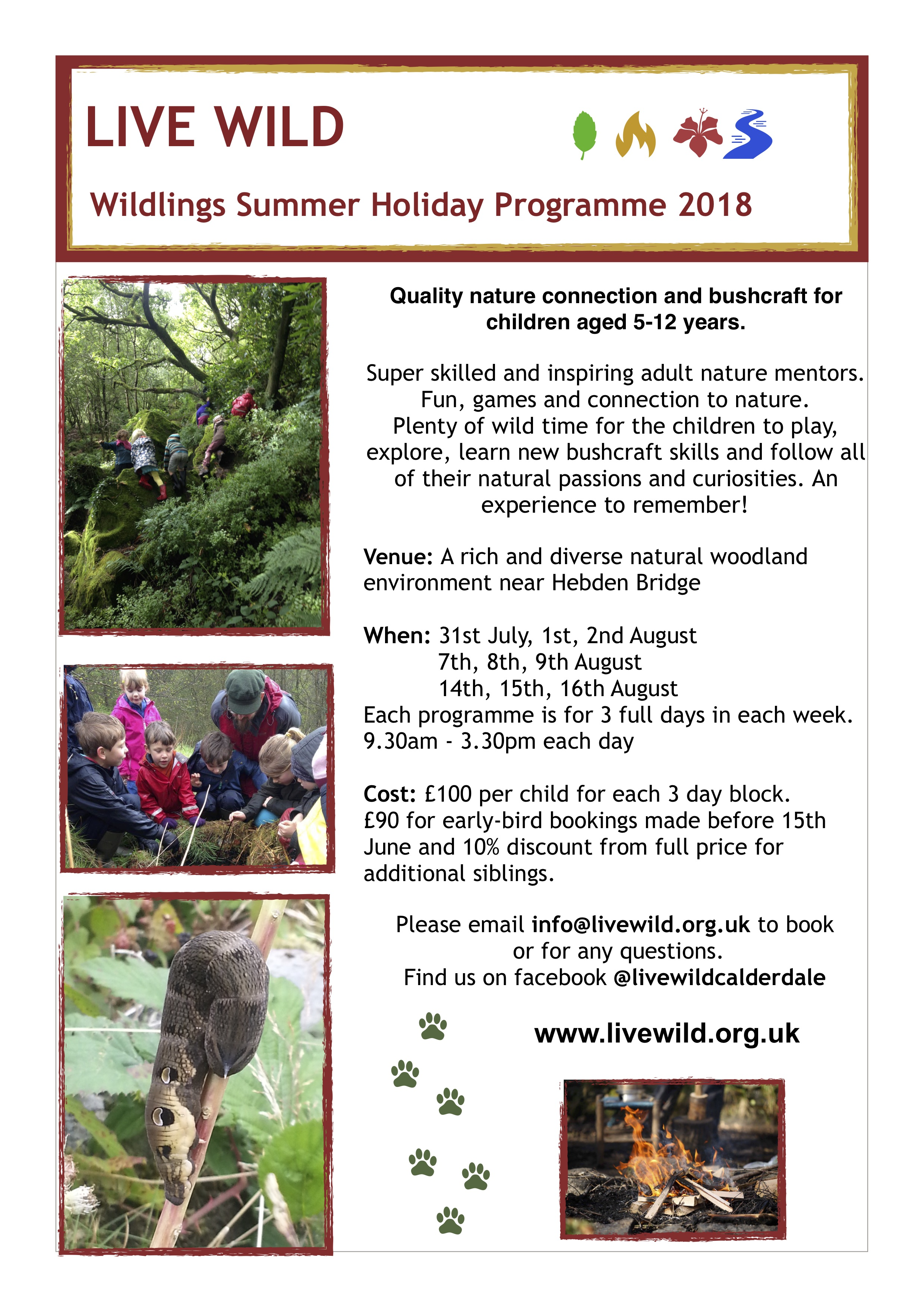 Wildlings Summer Holiday Programme
